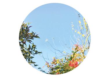 home-novita-giardini