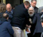 Assange Vidal
